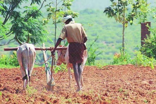 कोरोनाच्या वादळाने इंदापूर तालुक्यातील शेतकरी हवालदील