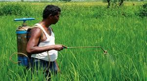 बियाणे, खते, किटकनाशके व इतर शेतमाल उत्पादन वाहतुक व विक्रीला मुभा
