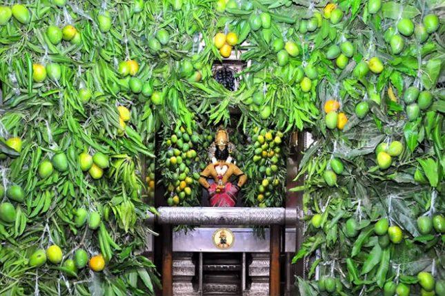 पंढरीच्या राजाच्या मंदिरात फळांच्या राजाची आरास