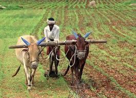 ग्रामीण भागातील विकास कामे विना अडथळा पार पाडणार : शिवराज पाटील