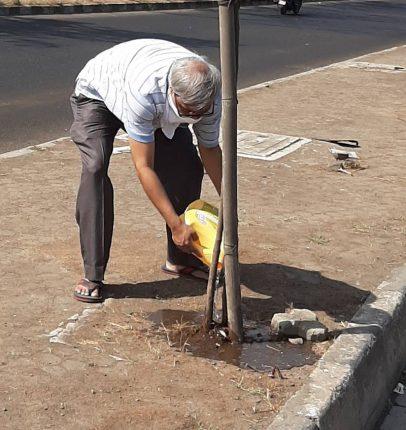 वृक्षांची काळजी घेणारे आजोबा