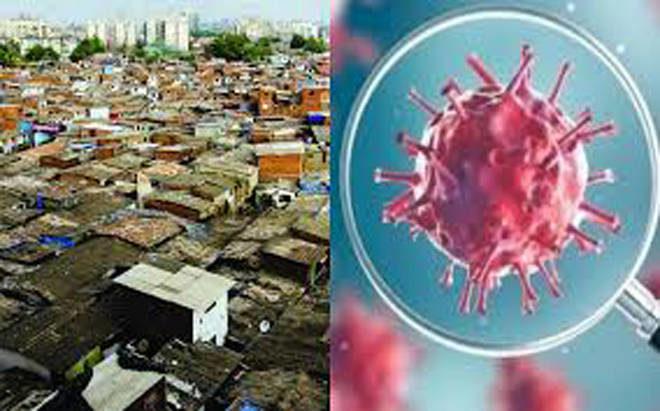 धारावीत २० नवे कोरोना रुग्ण, मृतांचा आकडा १०४ – दादर-माहीममधील रुग्णवाढ अद्याप नियंत्रणात