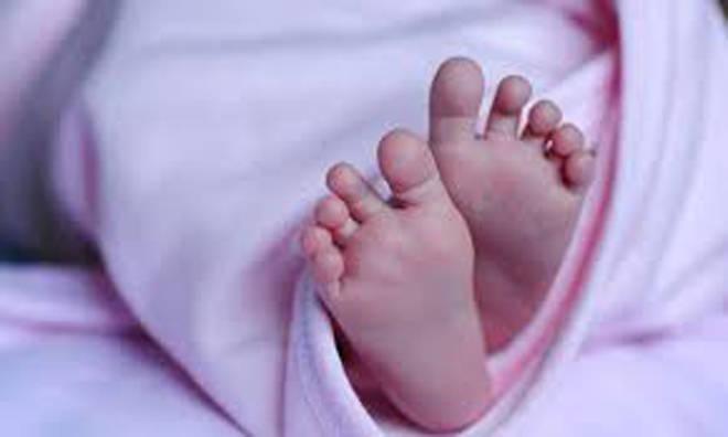 कल्याण-शीळ मार्गावर कचऱ्याच्या ढिगाऱ्यात सापडले स्त्री जातीचे अर्भक