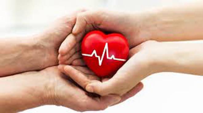 लॉकडाऊनच्या काळातही झाले अवयवदान – महिलेने केले मृत्युपश्चात यकृत दान, एक जीव वाचवला