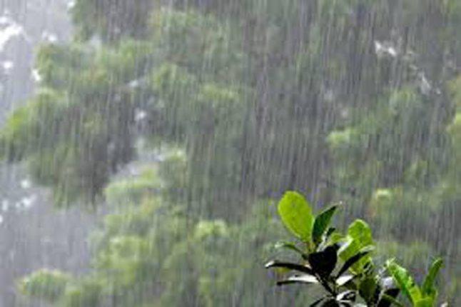 कोल्हापूर जिल्ह्यात अनेक ठिकाणी मुसळधार पाऊस