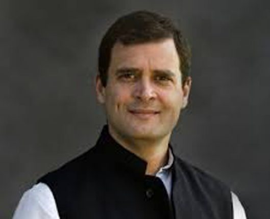 मागील ४ महीन्यांत २ करोड नोकऱ्या गेल्या, अर्थव्यवस्थेचे सत्य जगासमोर : राहुल गांधी