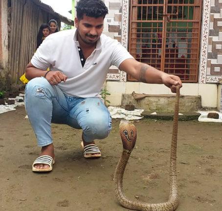 पावसाळयात सापांच्या बंदोबस्तासाठी सर्पमित्रांची नियुक्ती ; पिंपरी – चिंचवड महापालिकेची खबरदारी