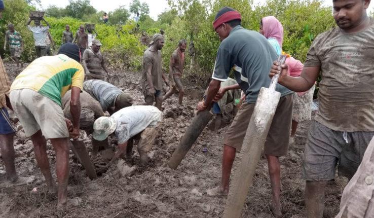 शासनाच्या मदतीची वाट न पाहता 'त्यांनी' स्वत:च बांधला बंधारा, वाचवली शेती