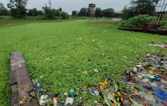 गणपती विसर्जन तलावांच्या स्वच्छतेकडे कल्याण डोंबिवली पालिकेचे दुर्लक्ष