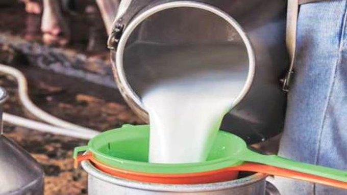 दूध उत्पादकांच्या मागण्यांसाठी 'लेटर टू डेअरी मिनिस्टर' आंदोलन, दूध उत्पादक शेतकरी संघर्ष समितीचा निर्णय