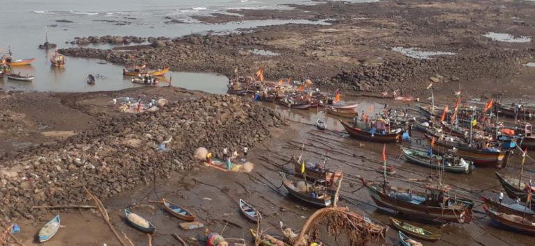 श्रीवर्धनमध्ये लवकरच मासेमारी सुरु होण्याचे संकेत