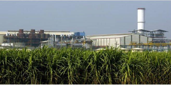 ३७ साखर कारखान्यांना राज्य सरकार थकहमी देणार