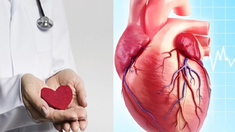 Today is World Heart Day, 7 Dangerous Reasons to Invite Heart Failure