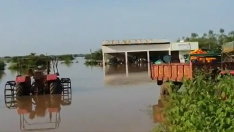 विदर्भात १७५ गावांना पुराचा फटका, ५३,००० हून अधिक लोकांना सुरक्षित स्थळी हलविले