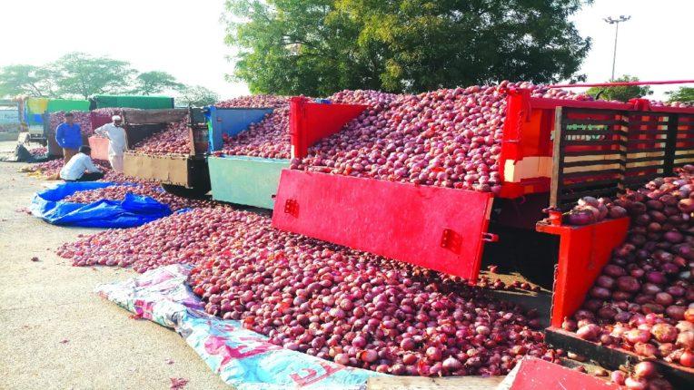 lasalgaon onion auction