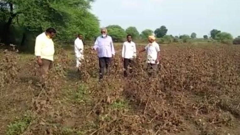 पूरग्रस्त शेतकऱ्यांना हेक्टरी २५ हजार रुपये मदत देण्याची मागणी