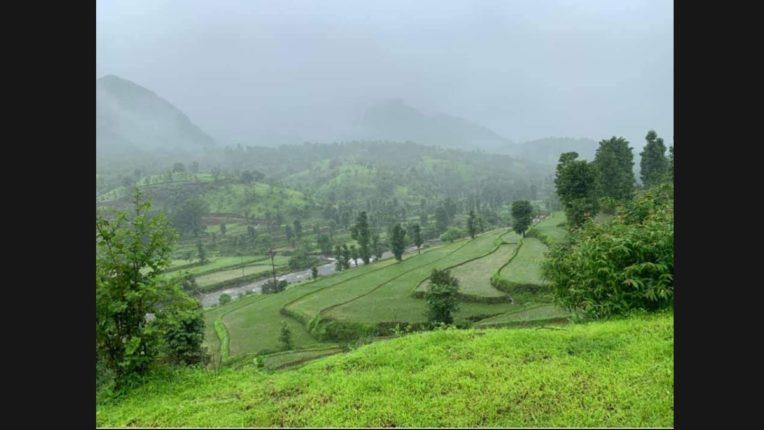 In Mahad the rainfall crossed the milestone of 3000 mm