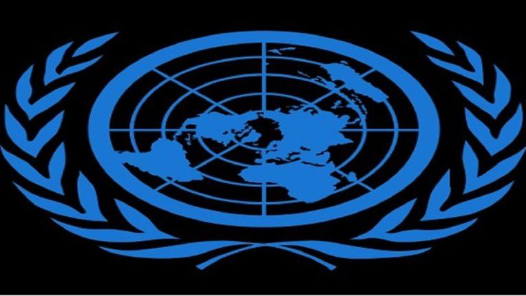 भारताने केली चीनवर मात, मिळालं 'ECOSOC'चं सदस्यत्व