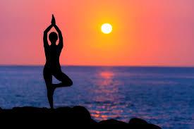 व्यायाम-योगासने-आहाराच्या त्रिसुत्रीने ह्रदयरोगला ठेवा दूर