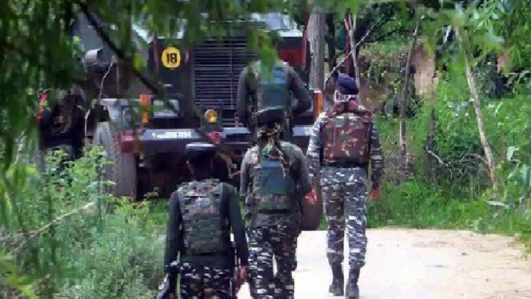 एलओसीजवळील पाकिस्तानच्या गोळीबारात भारताचे दोन जवान शहीद, चार जखमी