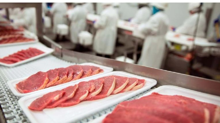 Muslims will not get halal meat in Belgium, court approves 'Ya' law