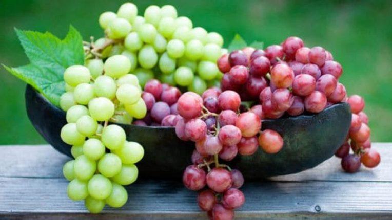 जानेवारीनंतर जोरदार द्राक्ष हंगाम, कमी उत्पादनामुळे चांगला भाव मिळण्याची आशा