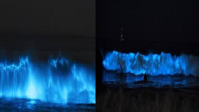 अलिबागमध्ये निसर्गाचा वेगळाच चमत्कार, निळ्या रंगाच्या लाटांनी नागरिक सुखावले