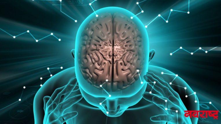मेंदूच्या पेशी देतात सकारात्मक-नकारात्मक अनुभव