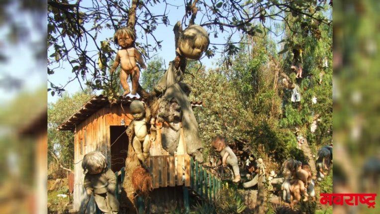 भीतीदायक बाहुल्यांचे रहस्यमयी बेट; बाहुल्या पाहून तुम्हालाही वाटेल भीती!