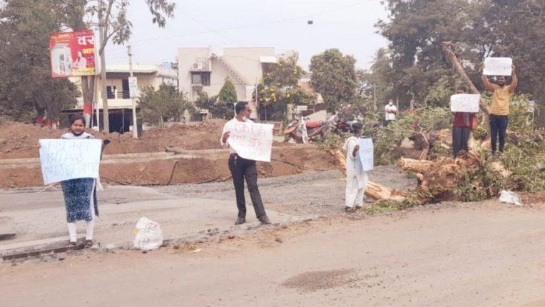 रस्ता रुंदीकरणासाठी केली झाडांची कत्तल; पर्यावरण प्रेमी उतरले रस्त्यावर