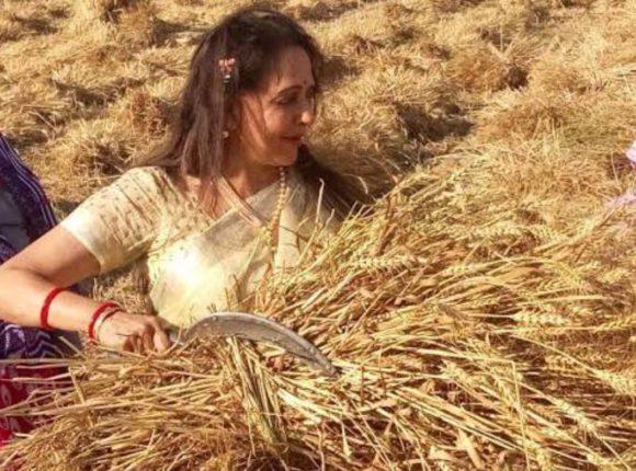 'जे शेतकरी आंदोलन करत आहेत, त्यांना कृषी कायद्यात काय समस्या आहेत हेच माहित नाही' ;शेतकरी आंदोलनाबाबत हेमा मालिनीचे वादग्रस्त वक्तव्य