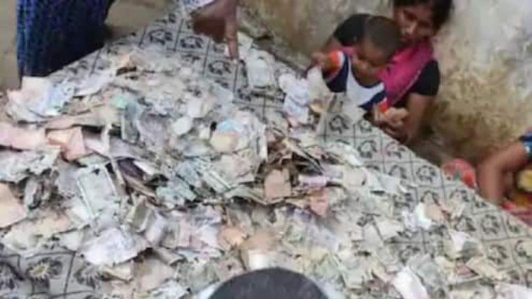 स्वप्नातील घर बांधणीसाठी साठविलेल्या ५ लाख रुपयांचा वाळवीने केला चुराडा; कुटुंबियांना दुःखाश्रू अनावर