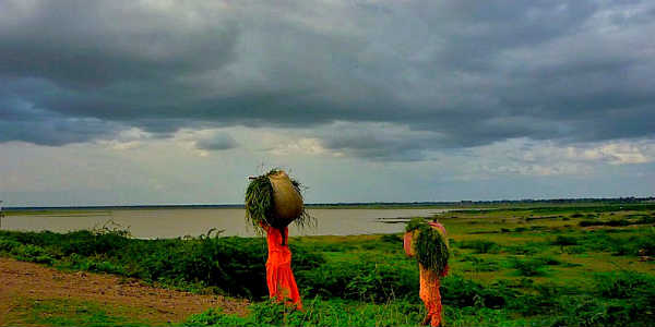 Significant changes in climate; Rain warning to Marathwada and Vidarbha for next three days