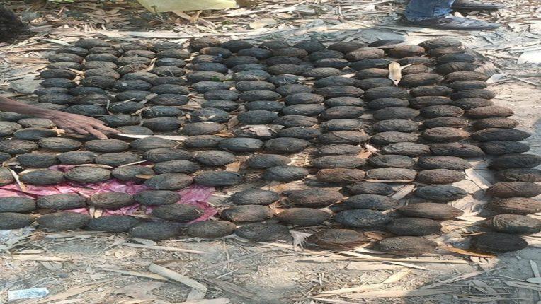 भयंकर ! पश्चिम बंगालमध्ये आढळले २०० क्रूड बॉम्ब, राज्यभरात खळबळ