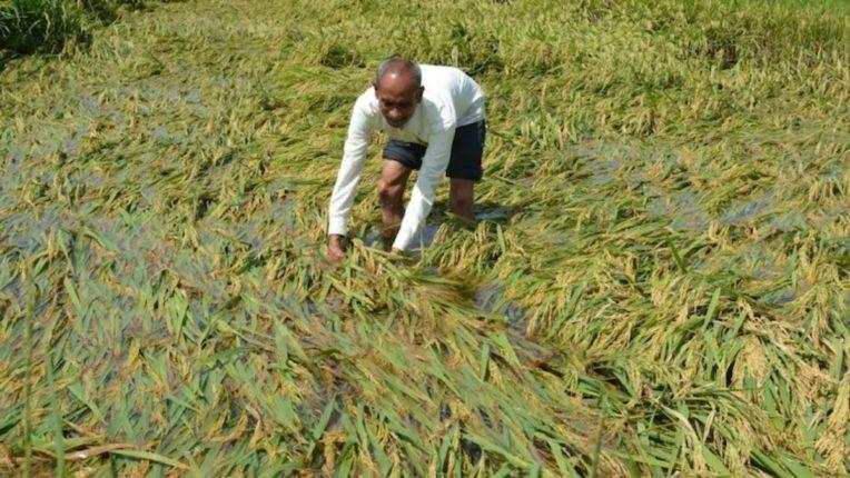 अवकाळी पावसाने शेतकरी हवालदिल; देवळी तालुक्यात अनेक ठिकाणी रिमझिम