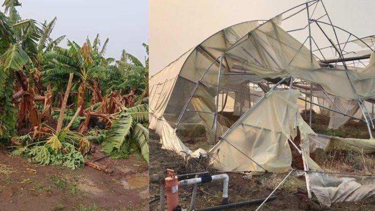 शिरपूर परिसरात शेतीचे नुकसान, वीजपुरवठा खंडित; जोरदार वादळवारा आणि गारांचा मारा