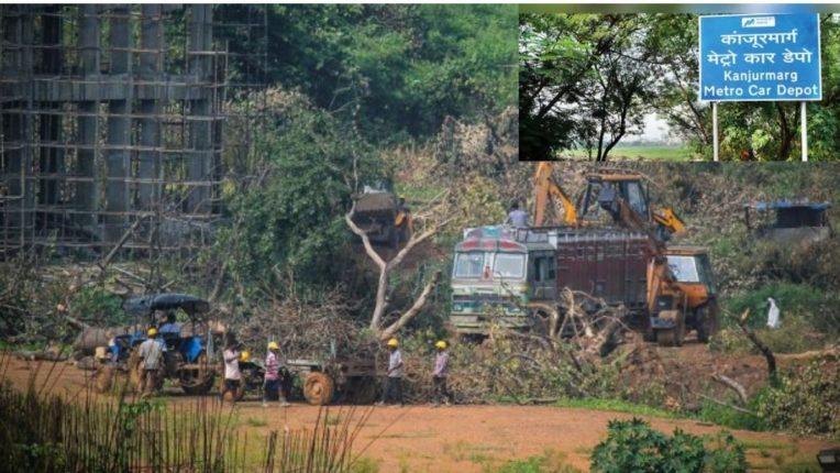 कांजूर भूखंडावर केंद्र आणि व्यावसायिकाचा अधिकारच नाही; पर्यावरण प्रेमी झोरू बाथेनाचा हस्तक्षेप अर्ज