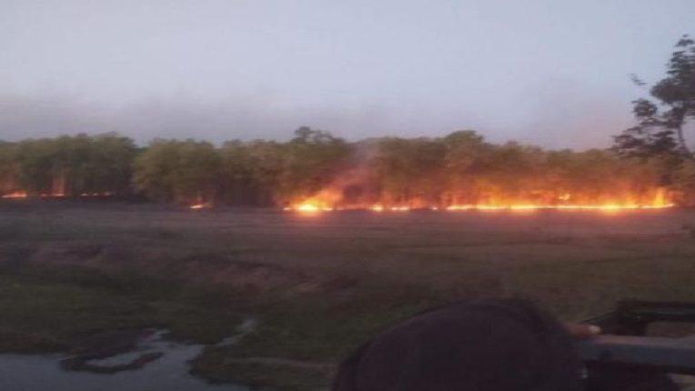 मध्य प्रदेशमधील बांधवगढ टायगर रिझर्व्ह पार्कमध्ये भीषण आग