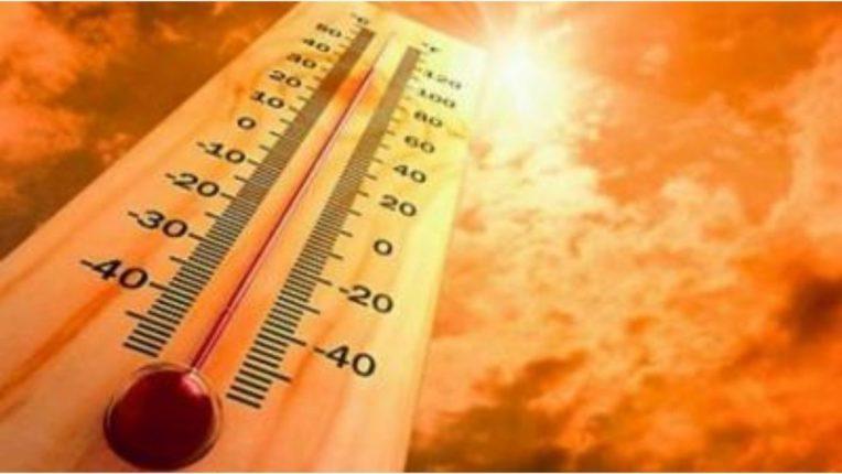 तापमानात होतेय दिवसेंदिवस वाढ; विदर्भात उन्हाचा चटका वाढतोय