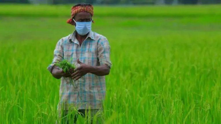 अपघात विम्याचा १३५ शेतकऱ्यांना लाभ; तीन वर्षांत १६५ प्रकरणे दाखल