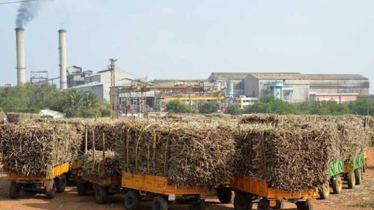 राज्यातील १३ साखर कारखान्यांना जप्तीच्या नोटीसा, आणखी १५ कारखाने साखर आयुक्तालयाच्या रडारवर