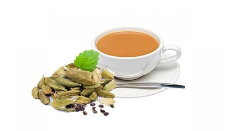 पश्चिम बंगालमध्ये निवडणुकांबरोबर 'हा' चहा आलाय प्रसिद्धीच्या झोतात ; १००० रुपये किंमतीच्या चहाची खासियत