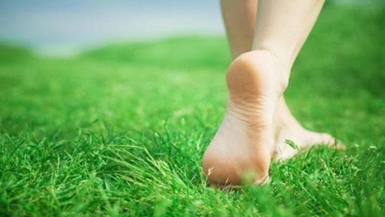 walk on lawn