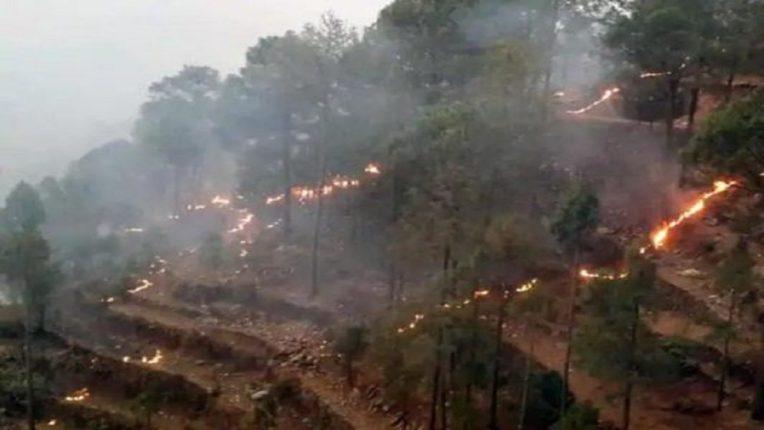 उत्तराखंडच्या जंगलांतील आग आणखी भडकली, हेलिकॉप्टरही पडतायत अपुरी
