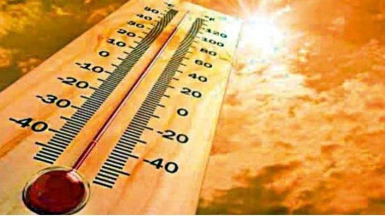 थंड हवामान असलेल्या कॅनडामध्ये लोक आता उष्णतेने बेजार – ५० अंश सेल्सिअसपर्यंत पोहोचले तापमान, शेकडो लोकांचा मृत्यू