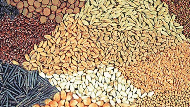 बी-बियाणे सवलतीच्या दरात द्यावे; परिसरातील शेतकऱ्यांची मागणी