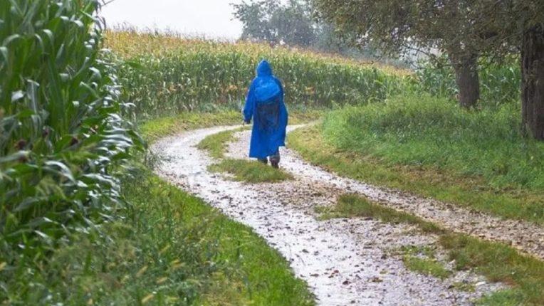 राज्यात पुढील २ दिवसात गारपिटीची शक्यता; हवामान विभागाने केलं शेतकऱ्यांना हे आवाहन