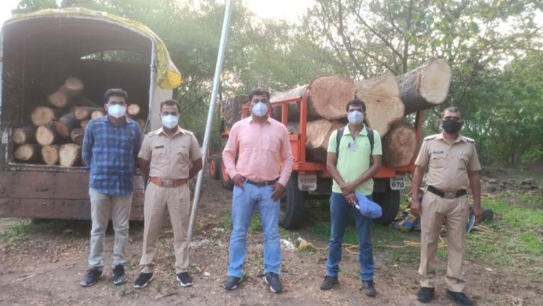 बेकायदा लाकूड वाहतूक प्रकरणी दोघेजण ताब्यात ; जागतिक जैवविविधता दिनीच वनविभागाची अंबेदरे येथे कारवाई