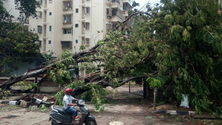 Municipal administration responsible for cyclone damage; BJP will file a petition