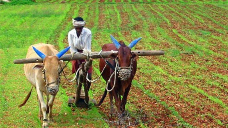 शेतकरी हितासाठी घटनेतून परिशिष्ठ ९ हटवावे ; शेतकरी संघटनेची मागणी